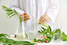 Medicinal Herbal Plant Analysi...