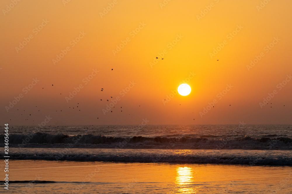 Siilhouette of birds in flight at golden hour sunset over the ocean