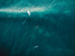 canvas print picture - Aerial view with surfers and barrel wave in tropical blue ocean. Top view