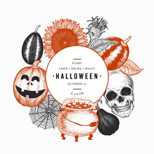 Halloween Design Template. Vector Hand Drawn Illustrations. Banner With Pumpkins, Scull, Cauldron And Sunflower Retro Style. Autumn Background.