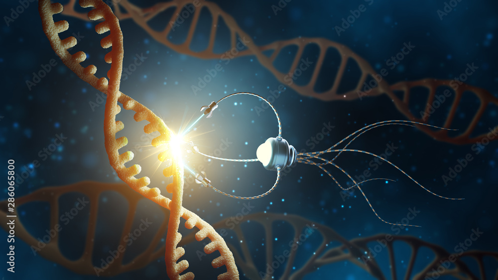 Fototapeta Medical concept in the field of nanotechnology. Genetic engineering and the use of nanorobots to replace part of the DNA molecule. 3 d rendering.