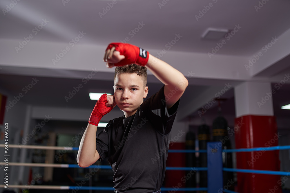 Fototapety, obrazy: Fighter shadow boxing in the ring
