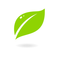Green Abstract Leaf Icon. Elements For Eco And Bio Logos. Vector Symbol Isolated On A White Background.