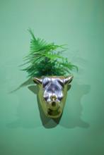 Planter, Silver Flower Pot In The Shape Of A Rhino Head. Interesting Flower Pot Design