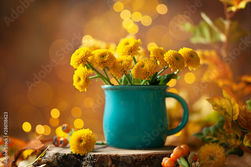 Fototapeta Beautiful yellow flower in blue cup on wooden table at bokeh  background, front view
