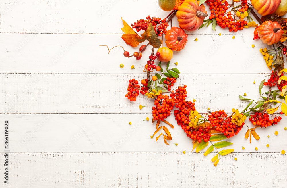 Fototapeta Autumn concept with pumpkins, flowers, autumn leaves and  rowan berries on a white rustic background. Festive autumn decor, flat lay with copy space.