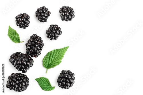 blackberry with leaf isolated on a white background Tapéta, Fotótapéta