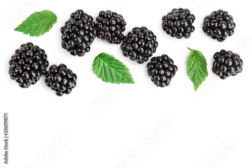 Fényképezés  blackberry with leaf isolated on a white background