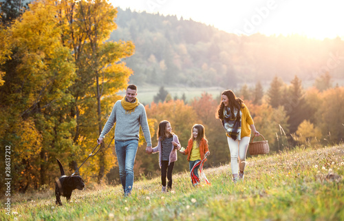Obraz A young family with two small children and a dog on a walk in autumn nature. - fototapety do salonu