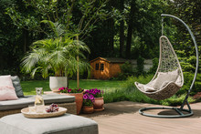 Stylish Garden Decoration With...