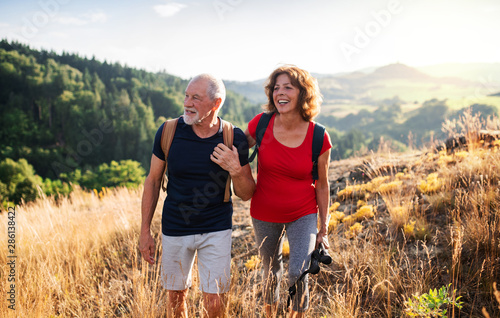 Obraz Senior tourist couple travellers hiking in nature, walking and talking. - fototapety do salonu