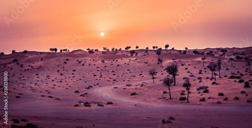 Foto auf Leinwand Hochrote sunset in desert