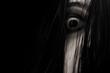 Leinwandbild Motiv Close up of scary ghost woman eye