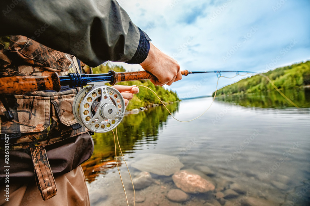 Fototapety, obrazy: Fisherman using rod fly fishing in mountain river