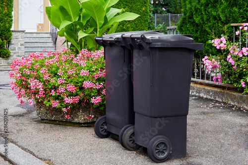 Obraz na plátně Two plastic garbage cans stand on clean asphalt against the background of flowering bushes on a sunny day