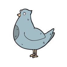 Digitally Drawn Illustration Pigeon Design. Hand Drawing Style