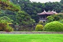 Traditional Japanese Gardens I...