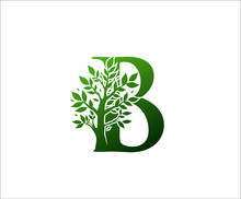B Logo Letter Created From Tree Branches And Leaves. Tree Letter Design With Ecology Concept..