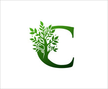 C Logo Letter Created From Tree Branches And Leaves. Tree Letter Design With Ecology Concept..