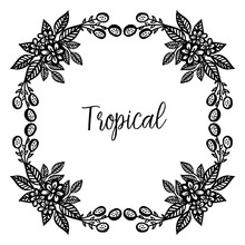 Template Of Tropical Card, With Beautiful Black White Flower Frame. Vector