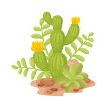 Tall Cactus With Flowers. Vector Illustration On A White Background.