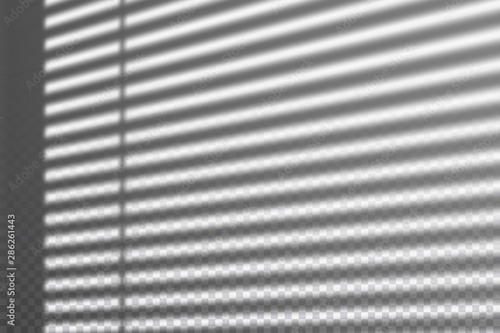 Fototapeta Realistic transparent drop shadow from the blinds on a wall, striped overlay effect for photo, design presentation. Vector illustration