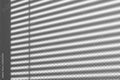 Obraz Realistic transparent drop shadow from the blinds on a wall, striped overlay effect for photo, design presentation. Vector illustration - fototapety do salonu