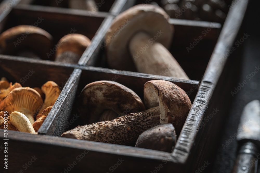 Fototapety, obrazy: Healthy wild mushrooms in old wooden box