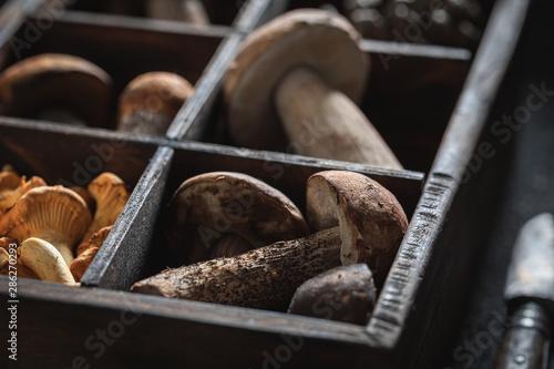 Fotografía  Healthy wild mushrooms in old wooden box