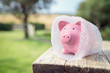 canvas print picture - Piggy bank wrapped in bubble wrap, protecting your money