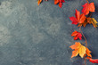 Autumn leaves over gray stone background, copy space, top view