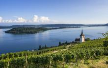 Blick Auf Die St. Petersinsel Und Die Kirche Von Ligerz Am Bielersee, Schweiz