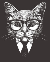Portrait Of Cat In Suit. Hand-...