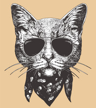 Portrait Of Cat With Sunglasses And Scarf. Hand-drawn Illustration. Vector