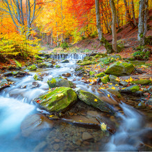 Colorful Autumn Landscape -  R...