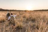 Fototapeta Sawanna - Game rangers walking with rifles through the African bushveld