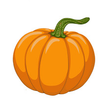 Cartoon Pumpkin Illustration. Object Isolated On White Background. Symbol Of Fall Season. Hand Drawn Element For Design Autumn Poster, Frame, Greeting Card, Pattern, Invitation.