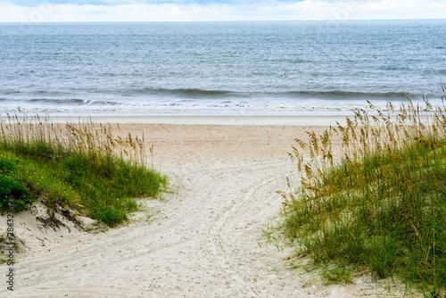 Photo Beach and Sea Grass in Florida
