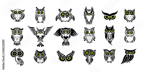 Keuken foto achterwand Uilen cartoon Cute owls collection, black silhouette for your design