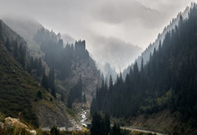 Foggy Landscape Of Mountains