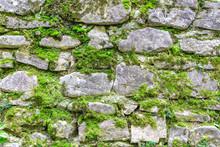 Древняя каменная стена с проросшим мхом
