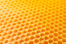 Honeycombs With Sweet Golden H...