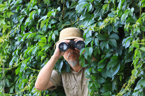 Fotografie, Obraz traveler looks through binoculars in the leaves