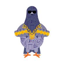 Pigeon Gangster. Cool City Bir...