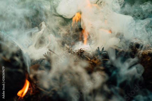Burning wood in fireplace Canvas Print