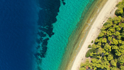 Aerial drone view of iconic sandy bay and turquoise beach of Galrokavos in Kassandra Peninsula, Halkidiki, North Greece