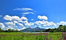 夏の高原・花の湖畔