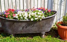 A Bathtub Full Of Colorful Flowers