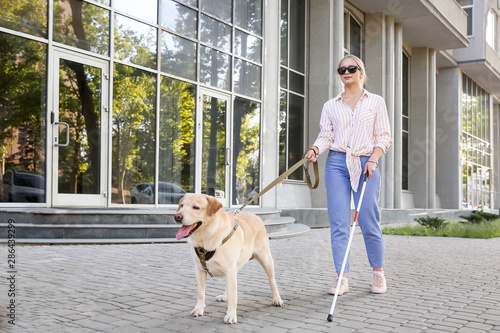 Photo Young blind woman with guide dog outdoors