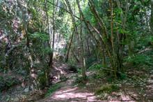 Lungo Il Sentiero 168 Gola Di Jana Nelle Marche